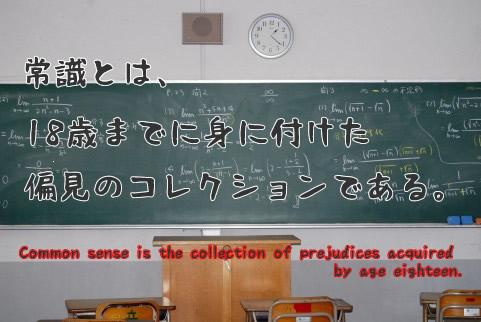 常識とは、18歳までに身に付けた偏見のコレクションである。